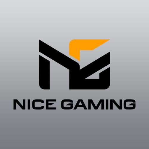 Nice Gaming